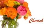 Cherish-Feb10