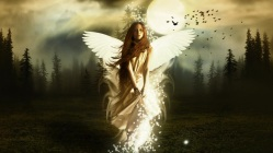 rise-on-an-angel-wallpaper-11