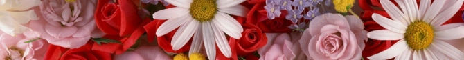 assorted-flowers-arrangement-website-header